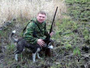 Охота с хаски