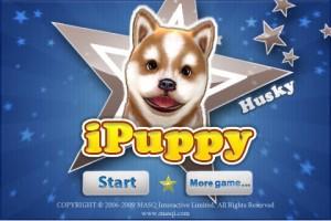 iPuppy Husky