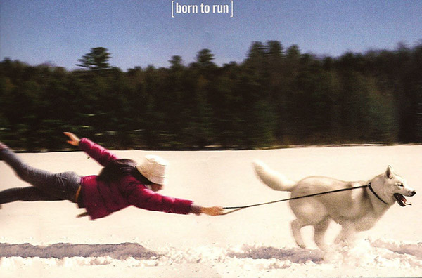 Husky Born to Run