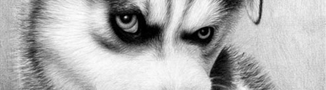 'Выбор щенка