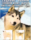 'Ездовые собаки (Аляскинский маламут, Сибирский хаски, Самоед)