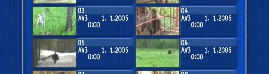 'Лайки — Медвежатницы