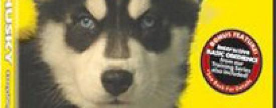 'Siberian Husky DVD Dog and Puppy Training Video