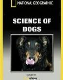 'Наука о собаках