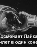 'Космонавт Лайка. Билет в один конец.